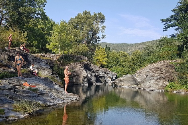 Swimming Herault