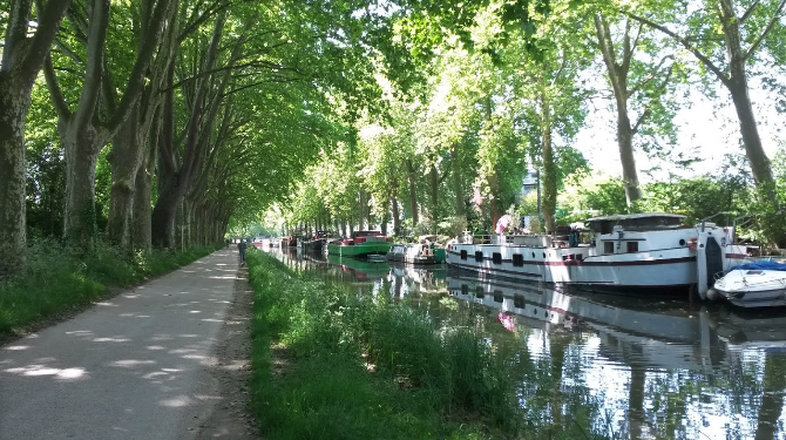 travel by bike along the canal du midi
